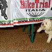 EC_TrialBike_23-24apr2010_Castigliocello_004.JPG