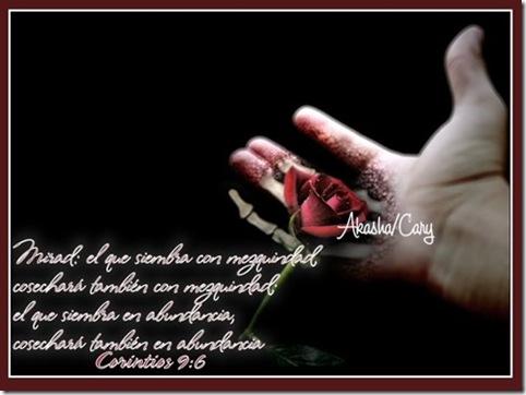 TarjetasCristianas-ElTambienLloro-0607