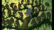 14 les babouins