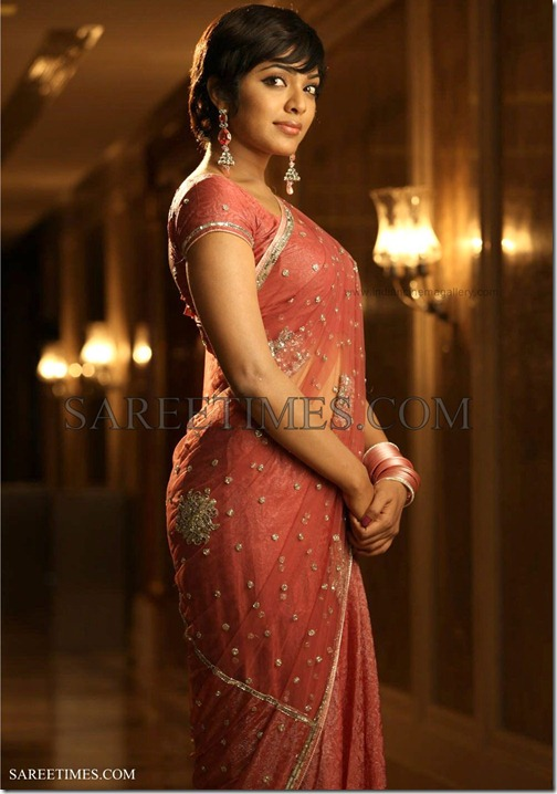 Rima_Killinga_Embroidery_Saree