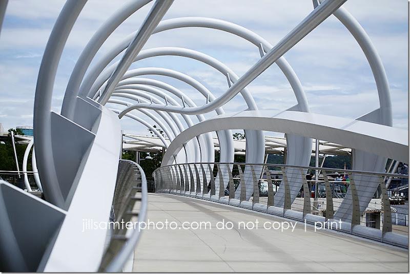 bridge_8501