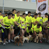 Pet Express Doggie Run 2012 Philippines. Jpg (46).JPG