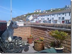 Cornwall-20130602-00568