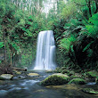 dandenong ranges - waterfall.jpg