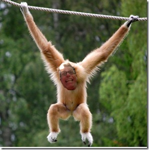 Me as monkey