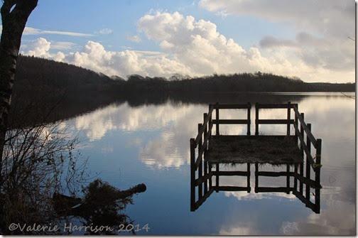 4-Whitefield-Loch