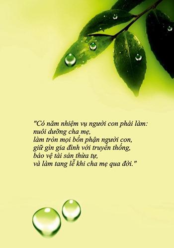 thiep-vu-lan-bao-hieu-cha-me (5)