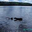 Batnuni Fishing trip 2011 068.JPG