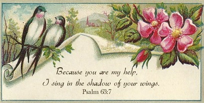 sing in the shadow of your wings