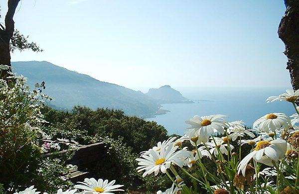 Holiday apartment Roverella 1 (734998), Cefalù, Palermo, Sicily, Italy, picture 13