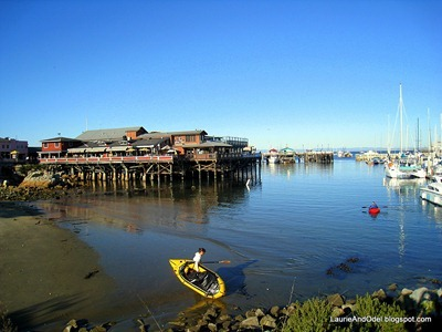 Kayakers in Monterey