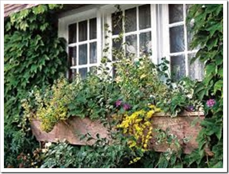 garden english
