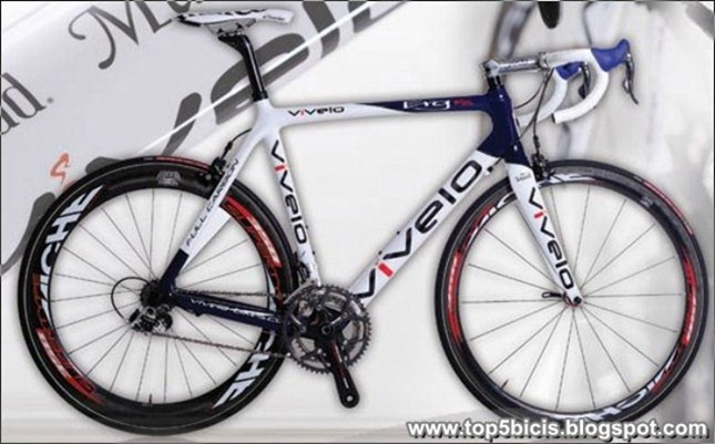 Vivelo ERG RS 2013  (2)