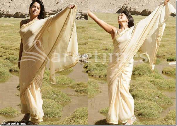 Sameera_Reddy_Cream_Georgette_Saree