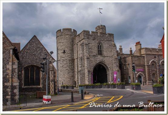 Canterbury-83