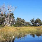 Pom Pom Camp, Wasserweg durchs Okavangodelta © Foto: Ulrike Pârvu | Outback Africa Erlebnisreisen