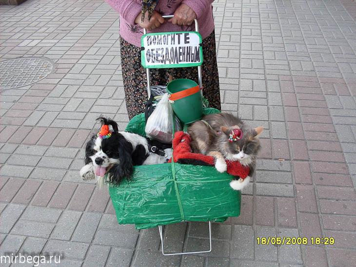 Фотографии. 2008. Киев - 96