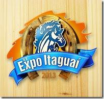 Expo Itaguaí 2013 - Associação de moradores de Vilar dos Coqueiros