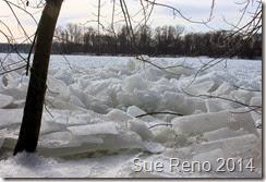 SueReno_SusquehannaRiverIce_Feb2014_Image11