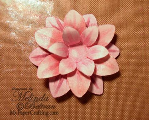 single-flower-500