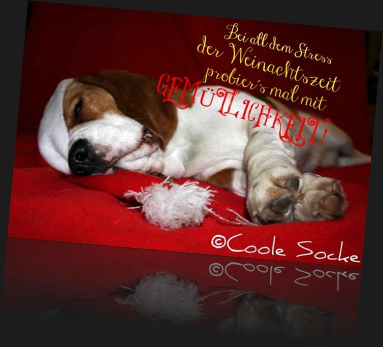 Wir wünschen allen eine schöne und besinnliche Weihnachtszeit