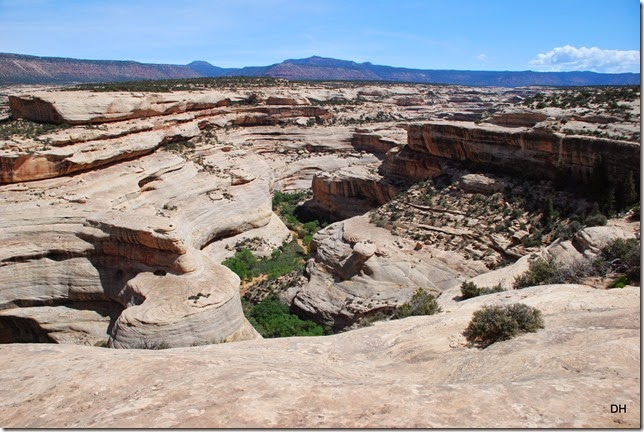 05-17-14 B Natural Bridges NM (42)