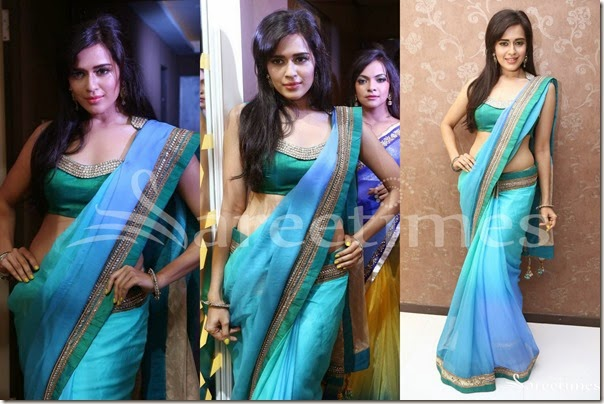 Aqua_Blue_Georgette_Saree