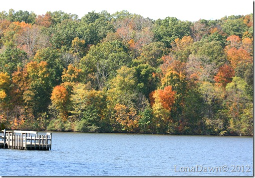 Tycoon_Lake2_Gallia_2012