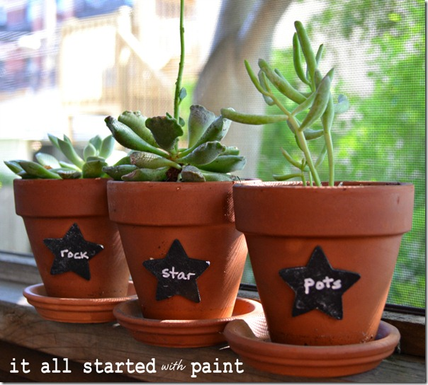 chalkboard_paint_star_plant_marker