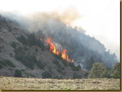 2012-06-08 Fire 001