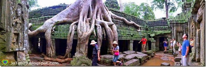 ta-prohm-siem-reap-cambodia-jotan23 (3)