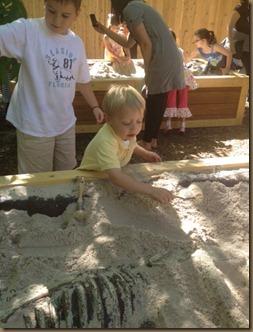 zoo digging