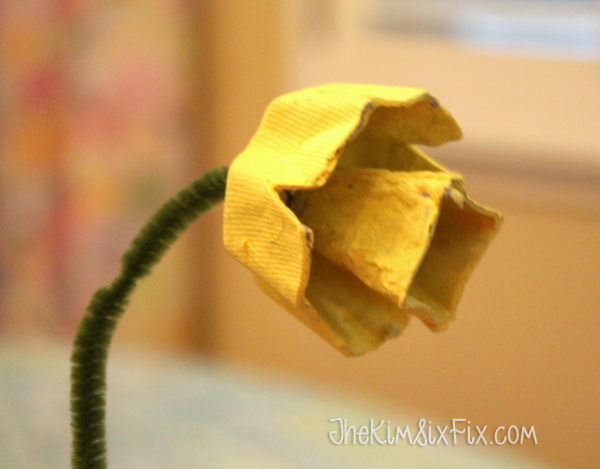 Egg carton cardboard daffodil