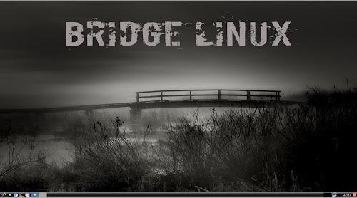 Bridge Linux 2012.4 Light