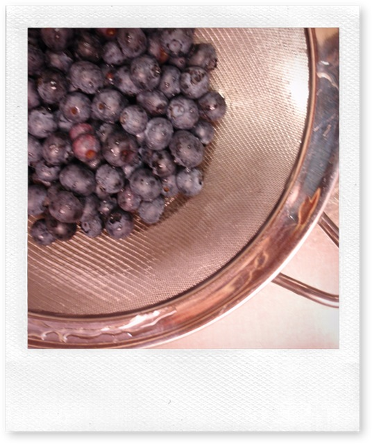 Fresh Blueberries in Colander