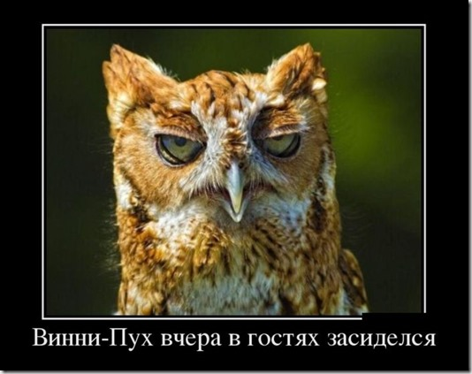 1350528260_podborka-demotivatorov-5