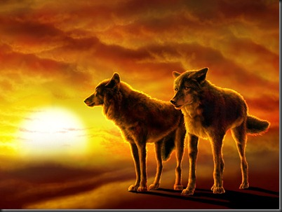 Wolves-Desert-Sunset-Wallpaper