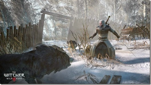 gaming-the-witcher-3-wild-hunt-02.jpg.