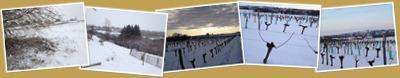 Afficher Issigeac sous la neige de février