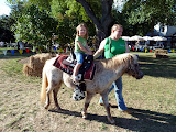 Pony rides at the Burke Centre Festival. (September)