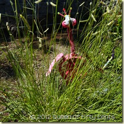Stalking the wild flamingo