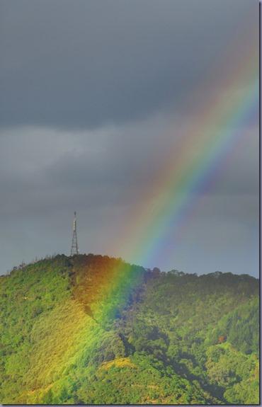 _DCL2307_Rainbow