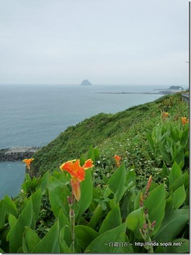 白米甕砲台-崖上的花朵