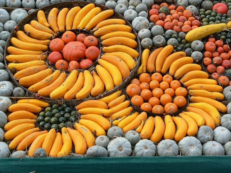 slindon-pumpkin-festival-5