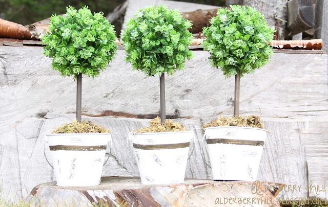 mini topiary