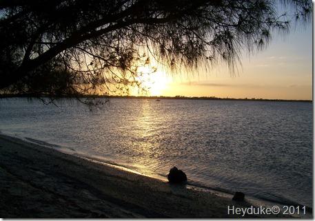 11-26-11 Captiva Island Florida 024