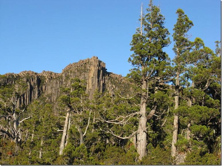Northern bluffs of Olympus and Pencil Pines