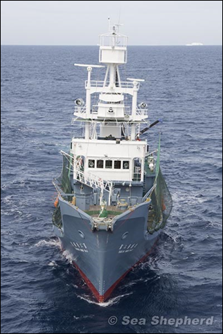 Japanese whaling ship, the Yushin Maru No. 3. Photo: Sea Shepherd