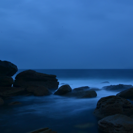 Magic In Clovelly by Kamila Romanowska - Nature Up Close Rock & Stone ( nature, australia, mood, dark, morning, rocks, sydney )