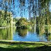 Boston Public Garden Bay